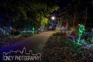 Cincinnati Zoo Festival of Lights